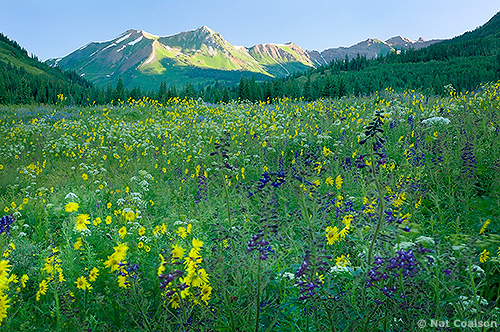 NCoalson_Crested_Butte_Composite