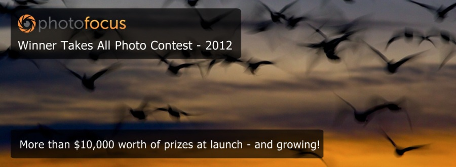 contest244_banner