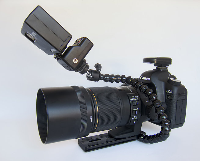 canon-5d-with-flash-bracket