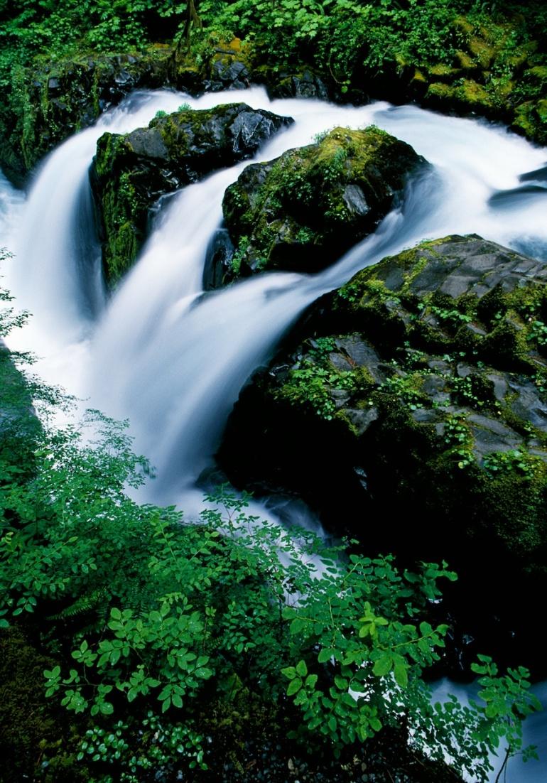 ScottBourne.com_photograph (8)