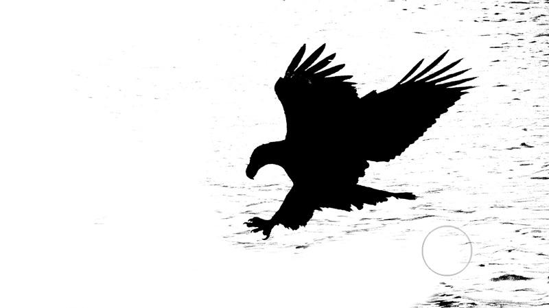calculations_Eagle6