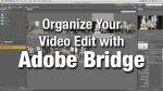 organizebridgebanner
