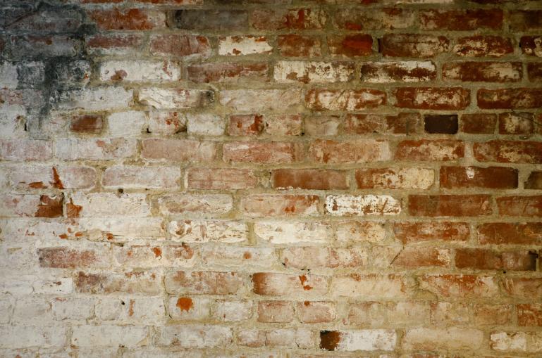 linzi wall
