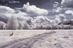 thousand-acres-0125_Edit_140519-2