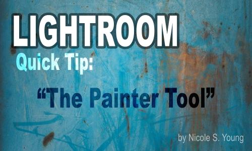 lr-painter-feature