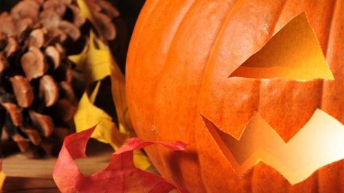 pumpkin_video