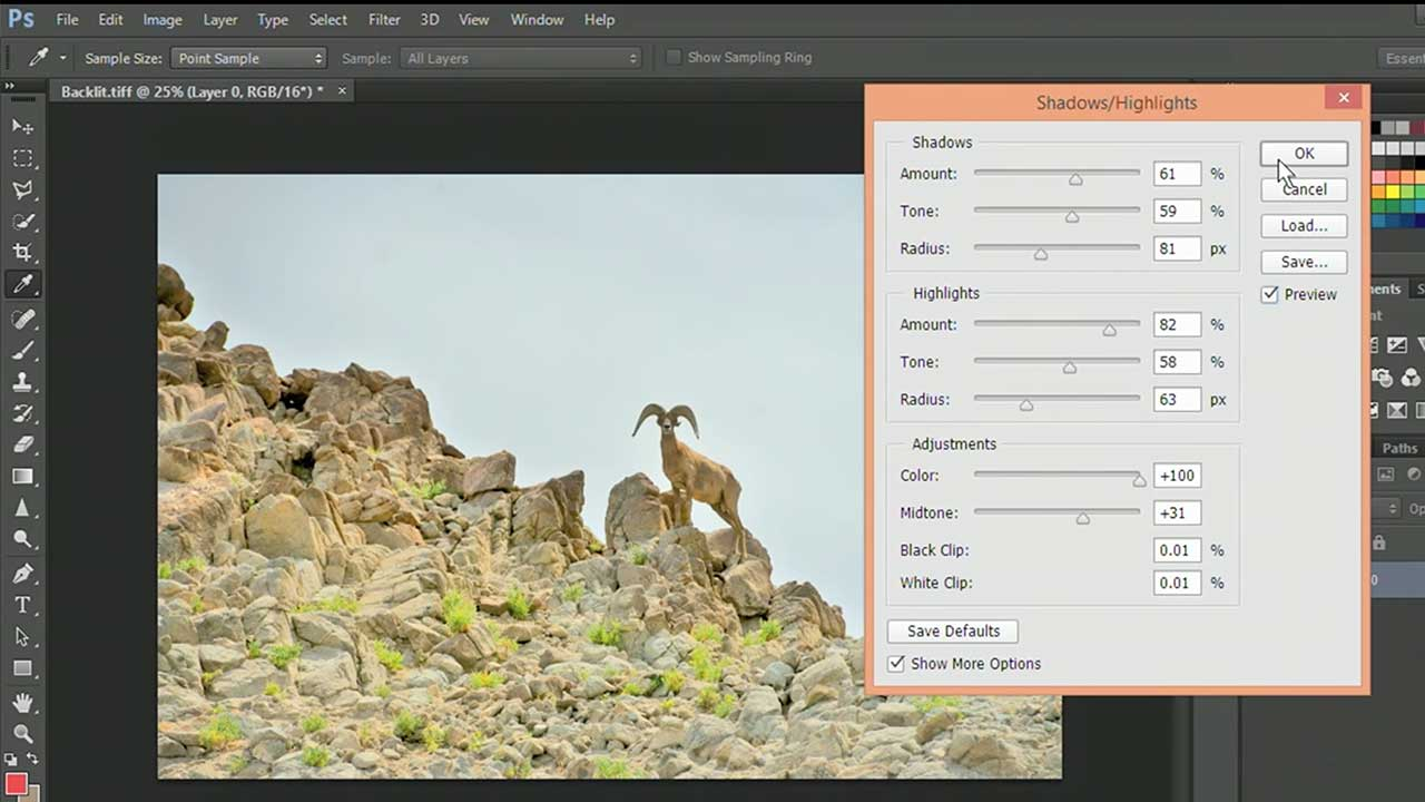 Using Shadows and Highlights Adjustments in Photoshop