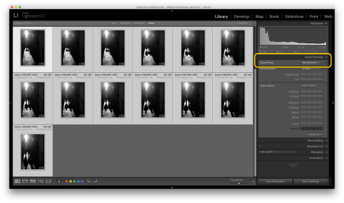 Step 5: Wait a few moments, and you will see the preset apply to your photos.